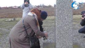 """Uczczenie pamięci lubaczowskich Żydów """"Plebańskie Pole"""" pod Dachnowem"""